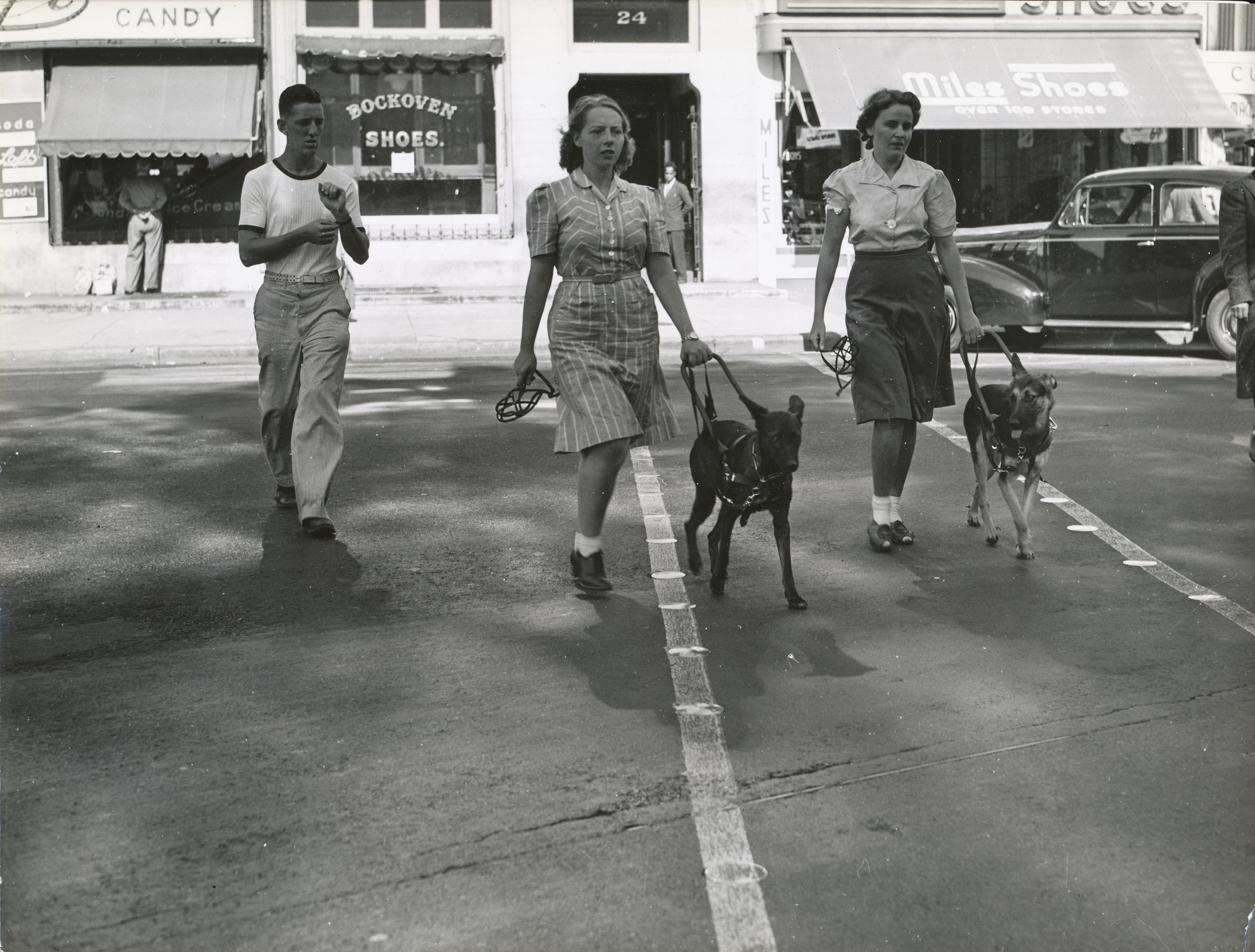 Black and white photo of Seeing Eye dogs and owners