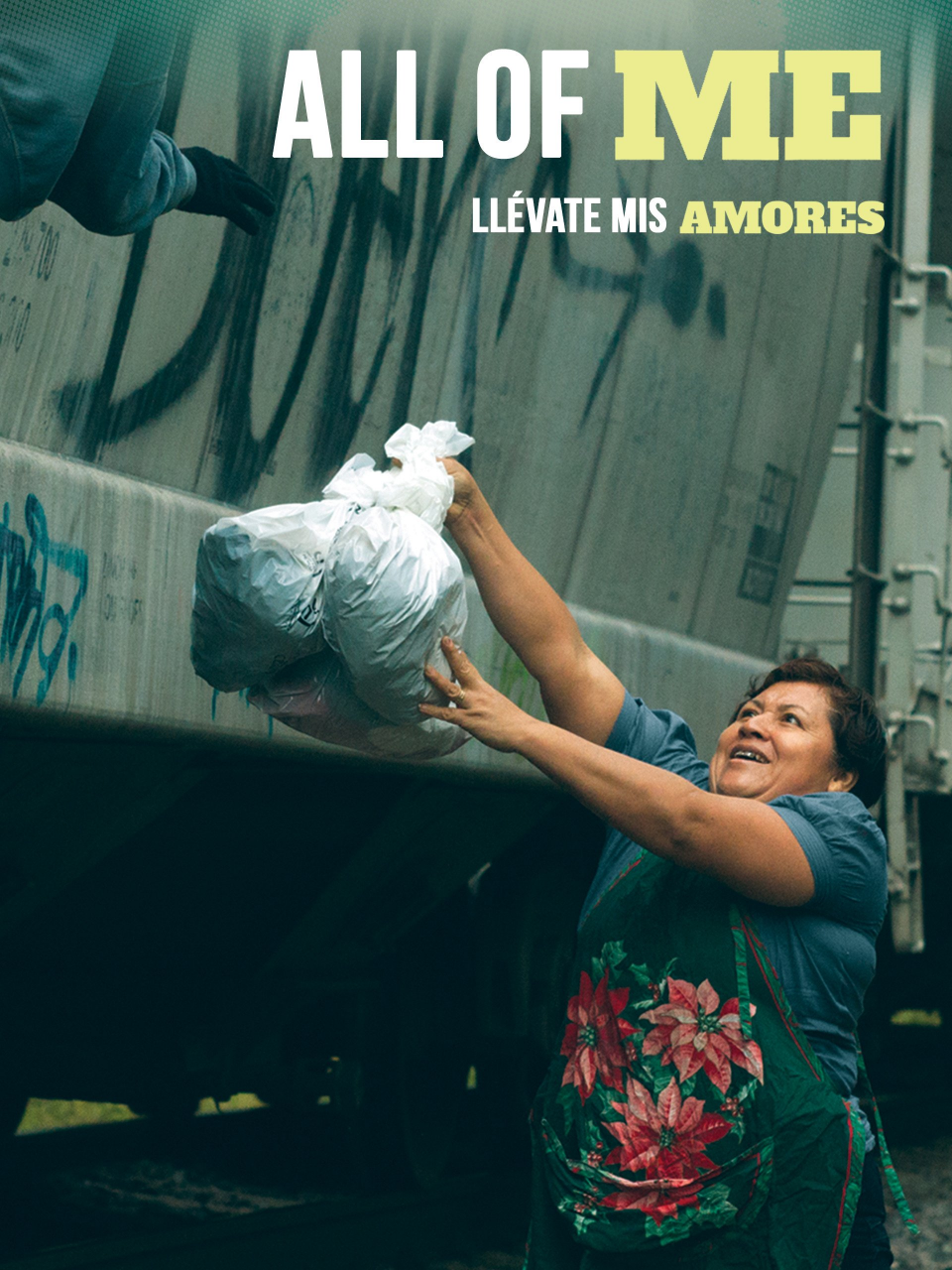 Movie cover: All of Me, a woman handing bags of food to a passenger on a train