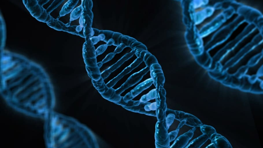 The Cultural Phenomenon of Home DNA Testing with Libby Copeland