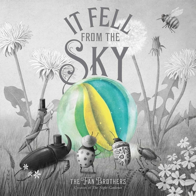 Book of the Day: It Fell From the Sky